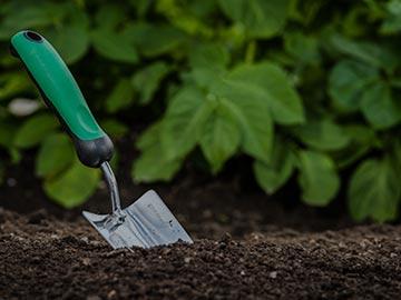 Devis entretien jardin Cran-Gevrier