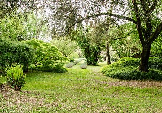 devis gratuit entretien de jardin et d'espaces verts dans la Seine-Saint-Denis